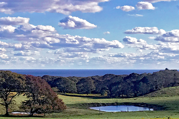 Keith Farm, Chilmark, Martha's Vineyard
